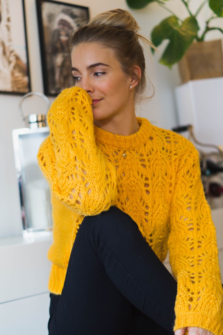 gul genser - ny favoritt FERDIG
