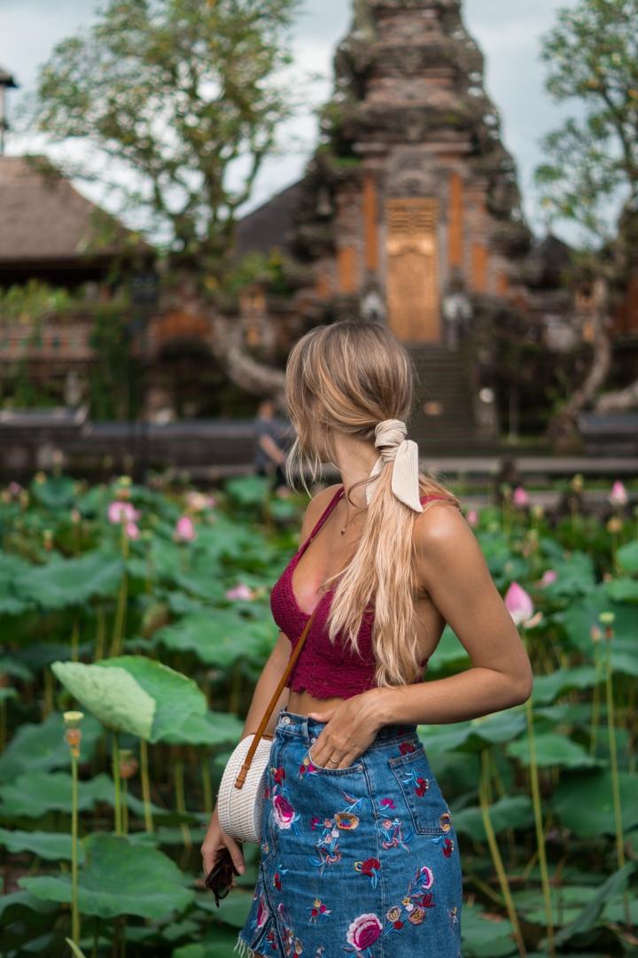 lotus pond-1